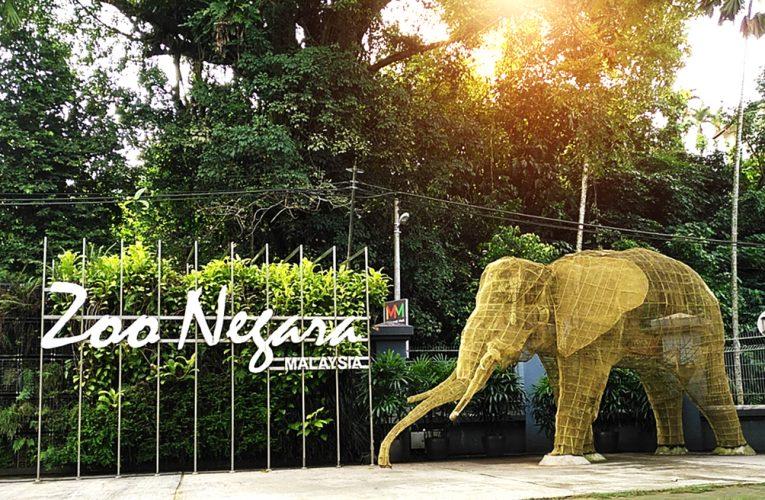Kerajaan Beri RM10.2 Juta Untuk Zoo Negara