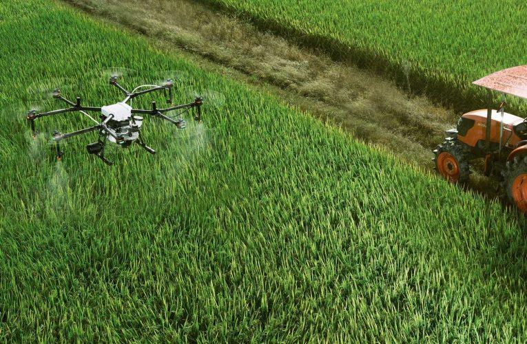 Guna Teknologi Dron Untuk Kemajuan Sektor Pertanian Negara